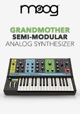 Moog Grandmother Semi-Modulär Analog Synth